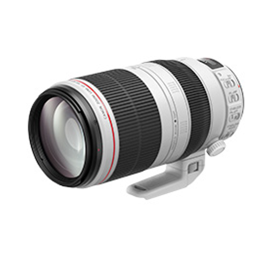EF70-200mm F2.8 L IS III USM